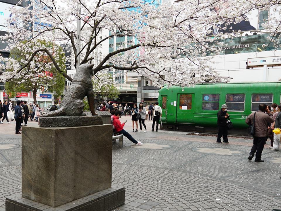 人通りもまばらなハチ公前広場の様子