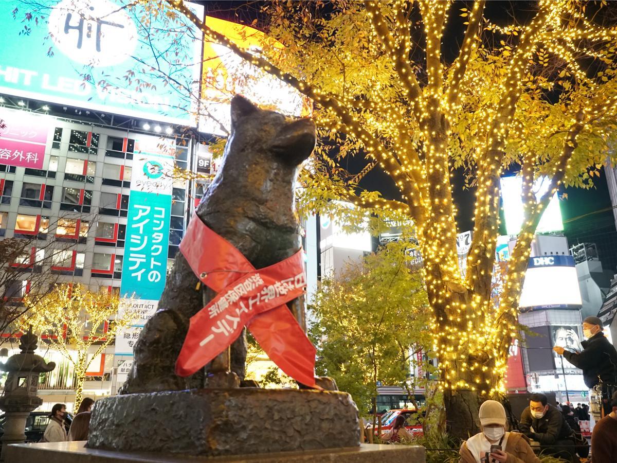 忠犬ハチ公像周辺にイルミネーションが点灯した