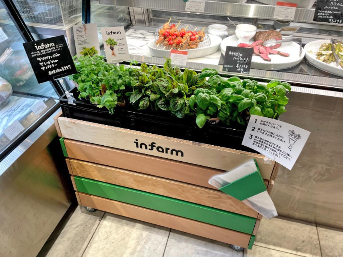 「ディーン&デルーカ広尾」店内で販売が始まった「インファーム」の野菜類