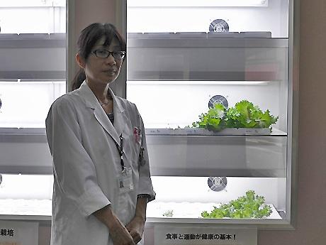 同院の植物工場