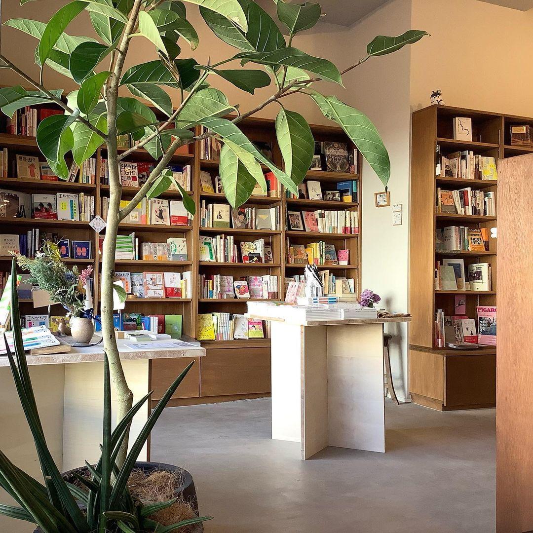 図書館 代田