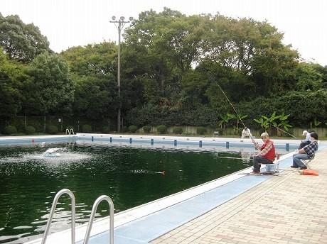しながわ区民公園内の屋外プールが10月1日から釣り堀として活用されている。 写真は金魚を釣り、ご機嫌な様子の利用客。
