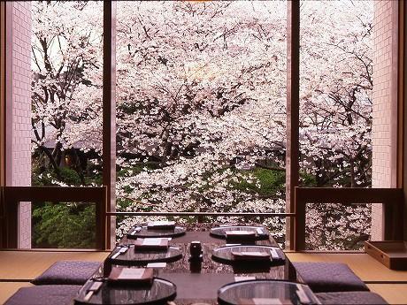 ホテルならでは」(山崎さん)という室内からの桜鑑賞。