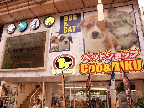 猫カフェが併設された「ペットショップCoo&RIKU」の外観