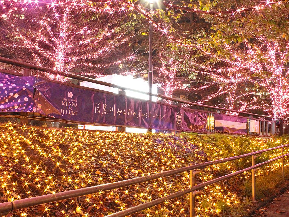 五反田ふれあい水辺広場のイルミネーションの様子