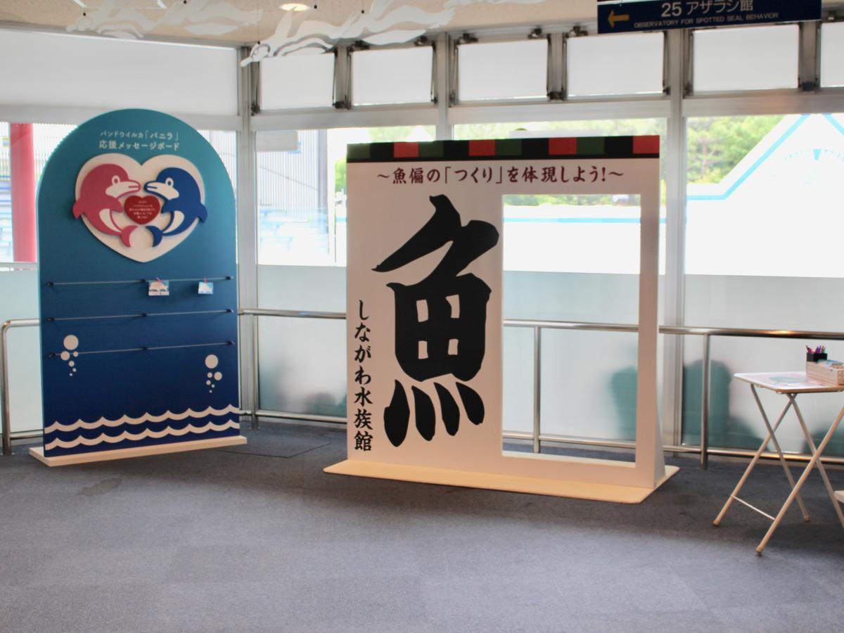 魚偏の漢字の「つくり」になれる撮影スポット