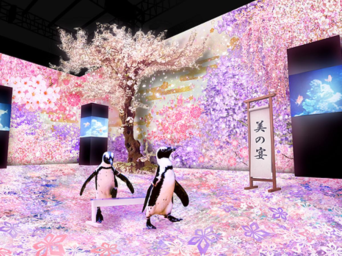 「パターンズ」では2羽のペンギンによるパフォーマンスも行う。桜が空間を彩るプロジェクションマッピングと連動する(イメージ画像)