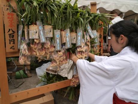 芝神宮の例大祭「だらだら祭り」は別名「生姜祭り」。参道や境内では縁起もののショウガの販売も(写真=清原逸夫)