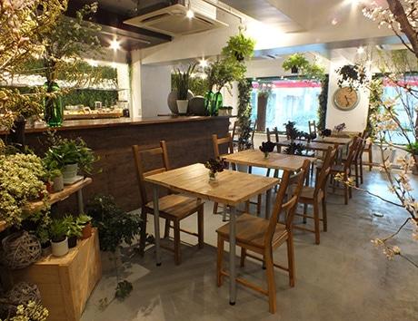 アンティークウッドの家具と植物に囲まれた店内