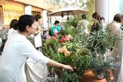 虎ノ門ヒルズで春の草花使った「フラワーマート」 高知県のハーブ専門農園も
