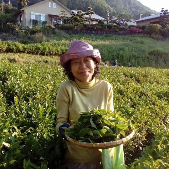 当日、登壇する養蜂家の後藤純子さん