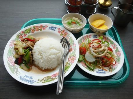 鶏肉のキクラゲのショウガ炒めご飯