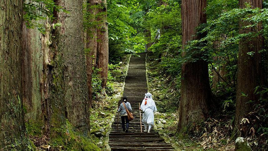 石段が続く羽黒山の杉並木は、観光ガイド日本編「ミシュラン・グリーンガイドジャポン」で3つ星として紹介されている