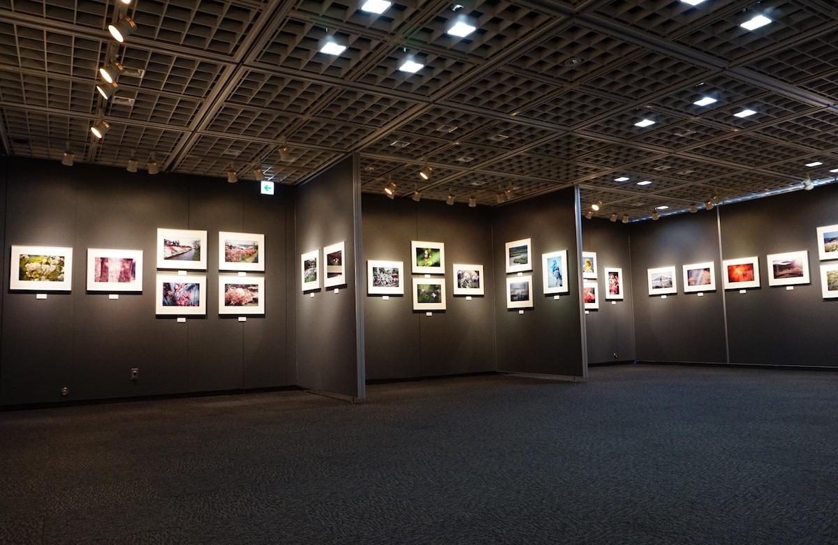 審査通過者はアイデムフォトギャラリー「シリウス」で写真展を開催できる