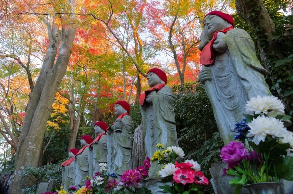 グランプリ作品 渡邉英明さん「秋色の屋根」高幡不動尊(日野市)