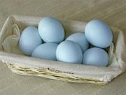 「青い卵のプリン」-藤沢のスイーツ店が発売、栄養価高く味わい濃厚