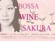 鎌倉の洋館サロンで観桜ボサノバライブ-ワイントークも