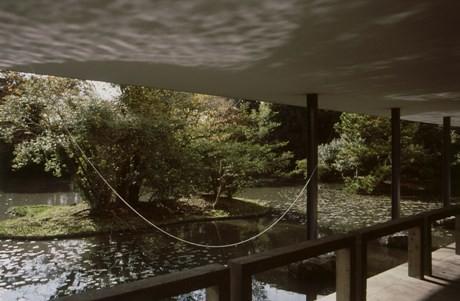 「恩寵」2009年 撮影=畠山直哉。展示は空間全体を作品とするインスタレーションの手法を用いている