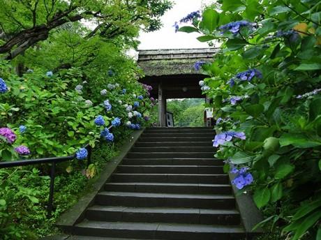 東慶寺ギャラリー&ショップのある松岡山 東慶寺