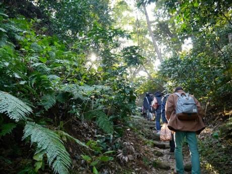 2日目の散策は街歩きだけでなく、自然に囲まれたハイキングコースも含まれる