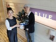 鎌倉のリラクセーションサロンが母の日ギフト 初の観葉植物付き施術券