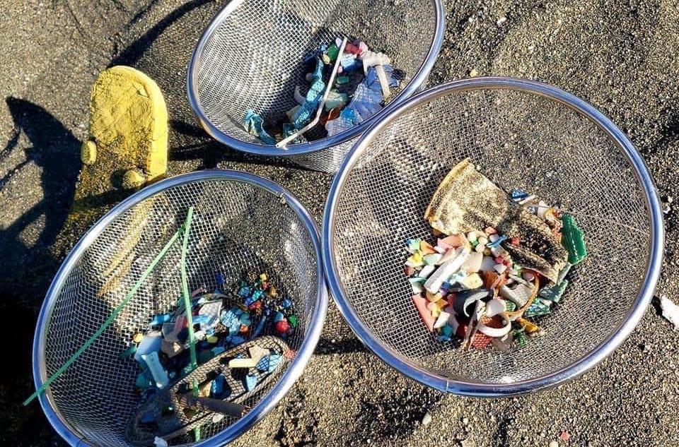 実際に片瀬海岸で集められたマイクロプラスチックごみ