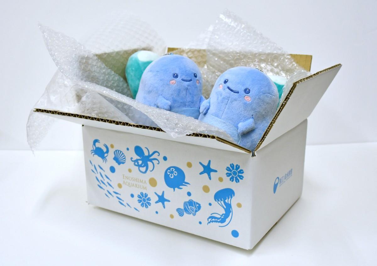 お土産袋と同じデザインがこだわりの梱包用の箱と公式キャラクターの「あわたん」