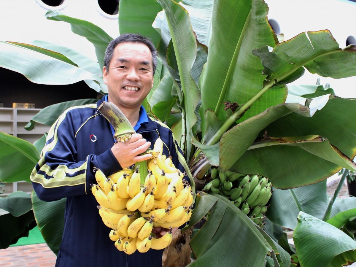 施設内で栽培したバナナを手に来場を呼び掛ける河村さん