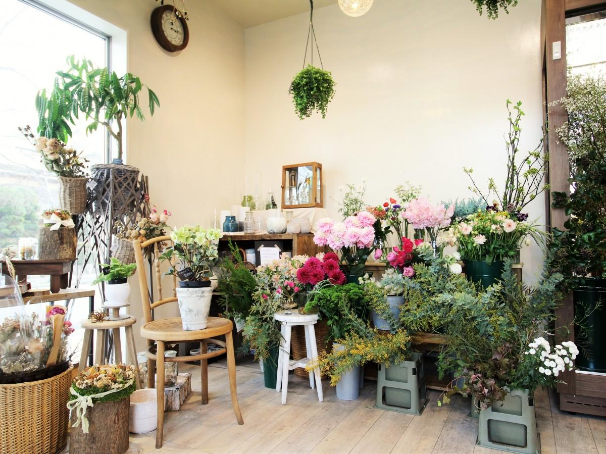 色とりどりの生花が並ぶ店舗内観