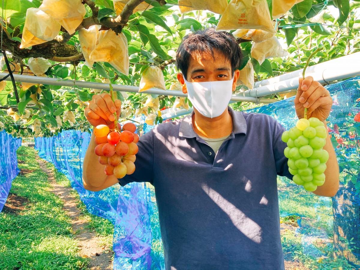 ブドウを手に来園を呼び掛ける山本さん