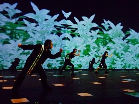 シンガポール・アート・フェスティバルに参加する日本のダンスカンパニー「ニブロール」のパフォーマンス(Photo:Satoru Watanabe)