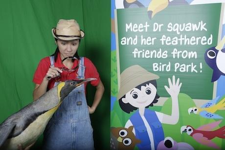「Bird Park Flies to Schools」の人気ホストであるDr Squawkと一緒に各大陸の飛べない鳥について教える企画も