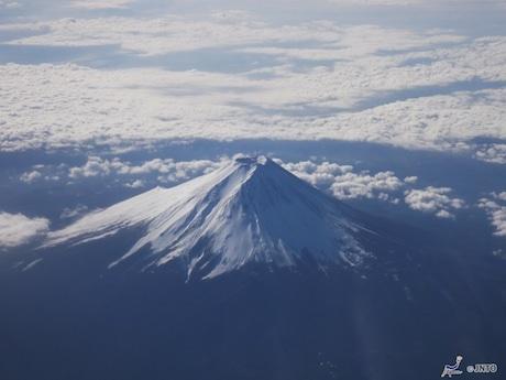 同フェアでは世界遺産に登録された富士山も紹介される