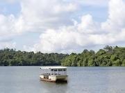「リバー・サファリ」に新アトラクション-遊覧船で熱帯雨林や動物を観察