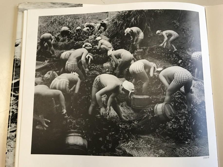 日本写真美術展の総理大臣賞を受賞した作品「海女の群像」
