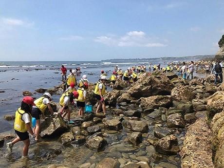 磯観察でアメフラシや貝などを探す生徒たち