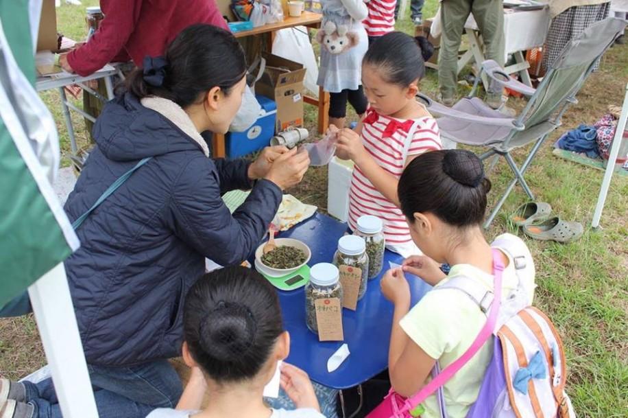 (写真)野草茶をブレンドするワークショップに参加する子どもたち
