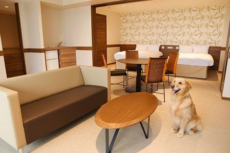 愛犬とともにリラックスできる客室内