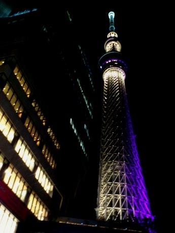 写真は江戸紫をテーマカラーとした「雅」ライティング。22時頃。
