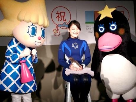 6月14日、報道陣に披露された生後17日目のマゼランペンギンの赤ちゃん。東京スカイツリーの公式キャラクター「ソラカラちゃん」と「テッペンペン」もお祝いに駆け付けた。