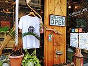 錦糸町シルクロードカフェで「Tの森」 カフェがTシャツの森になる二日間