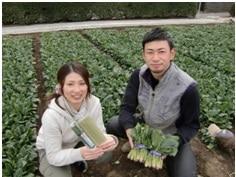 ほうれん草生産者の遠藤夫妻
