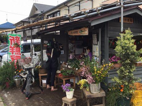 国分寺の地場野菜「こくベジ」の販売所
