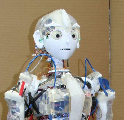 企画展で展示される「筋骨格型ヒューマノイド『小太郎』」