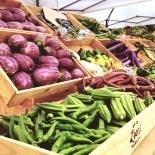 IKEA立川でファーマーズマーケット 地域の生産者や農家出店、江戸東京野菜も