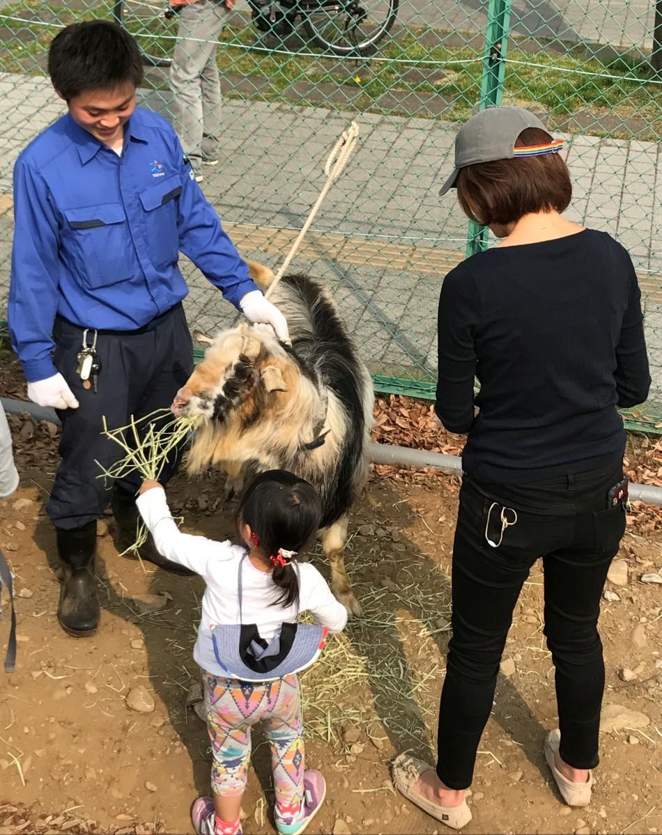ヤギとの交流を楽しむ親子連れ