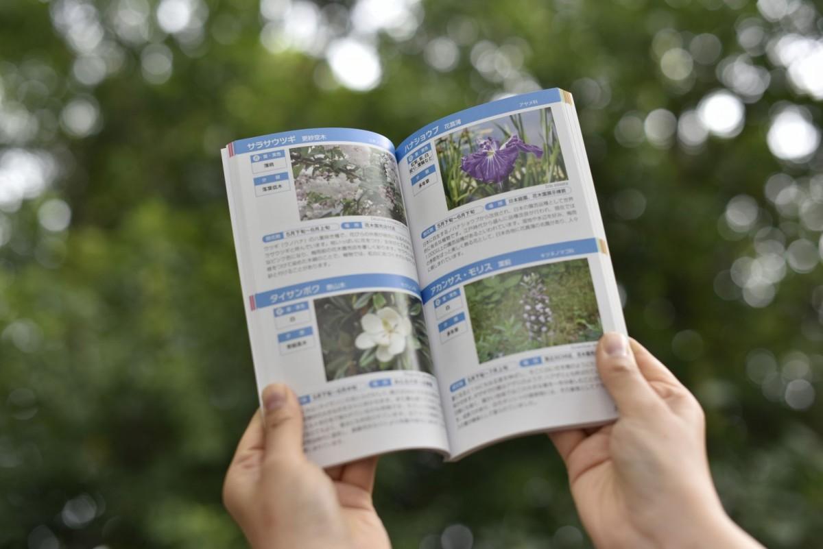 写真付きで園内の植物が紹介されるガイドブック「花ごよみ」