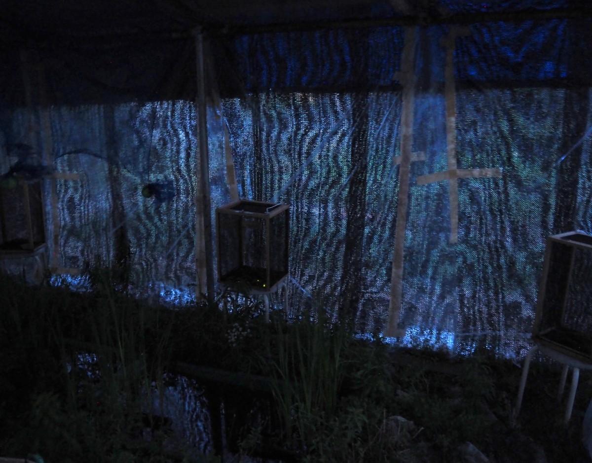 ホタルの居る池を囲う小屋に入り、ホタルを楽しんだ