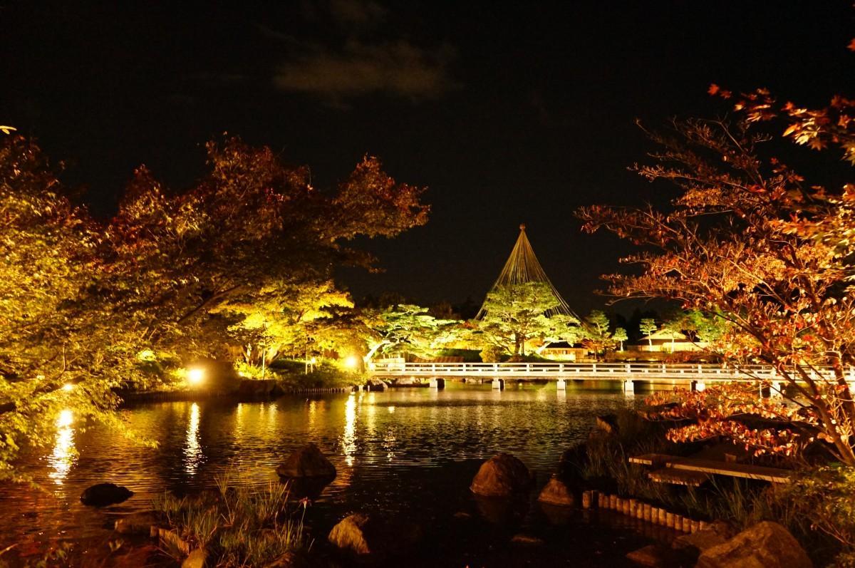 日本庭園の紅葉と松の雪づりのライトアップ