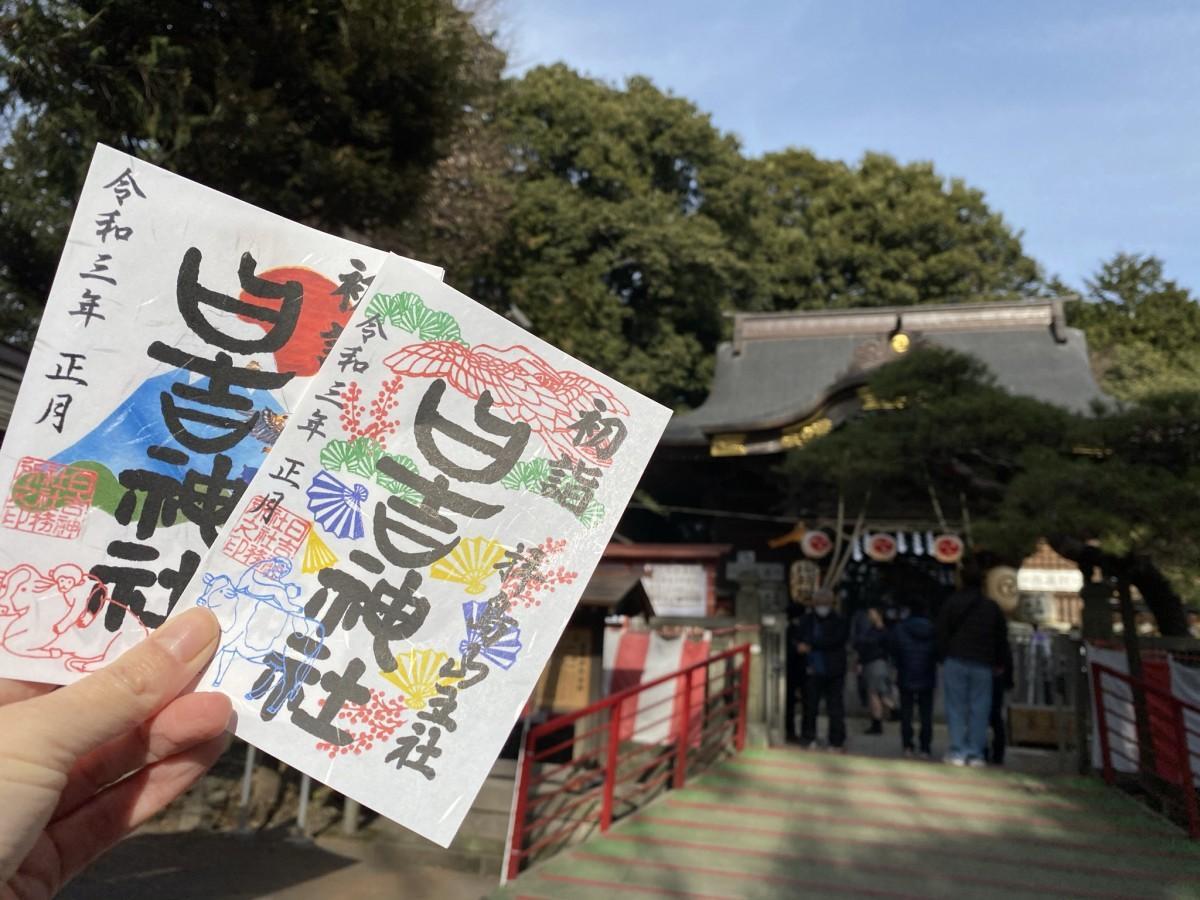 1月限定の御朱印(鶴と松の柄と、鷹・なす・富士山が描かれた初夢の柄)